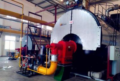 蒸汽锅炉使用现场